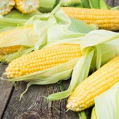 Corn Sweet (each)