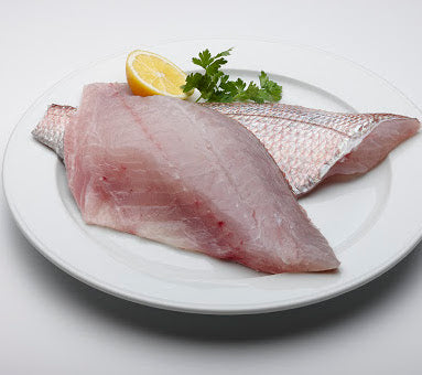 Snapper Fillets (approx. 200g)