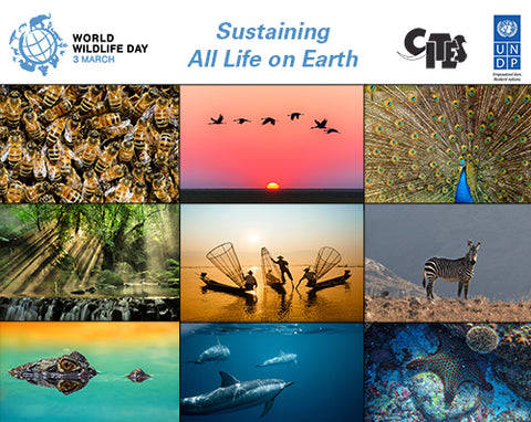 world wildlife day 2020