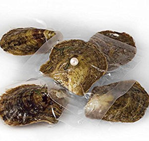 Tray of 5 Classic Oysters 6-8 mm sku # 002-O