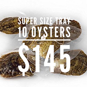 Super Size Tray Of 10 Oysters- Classic Oysters 6-8mm sku # 003-O