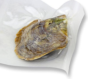 Classic Oyster 6-8mm (1-Case of 200 oysters)