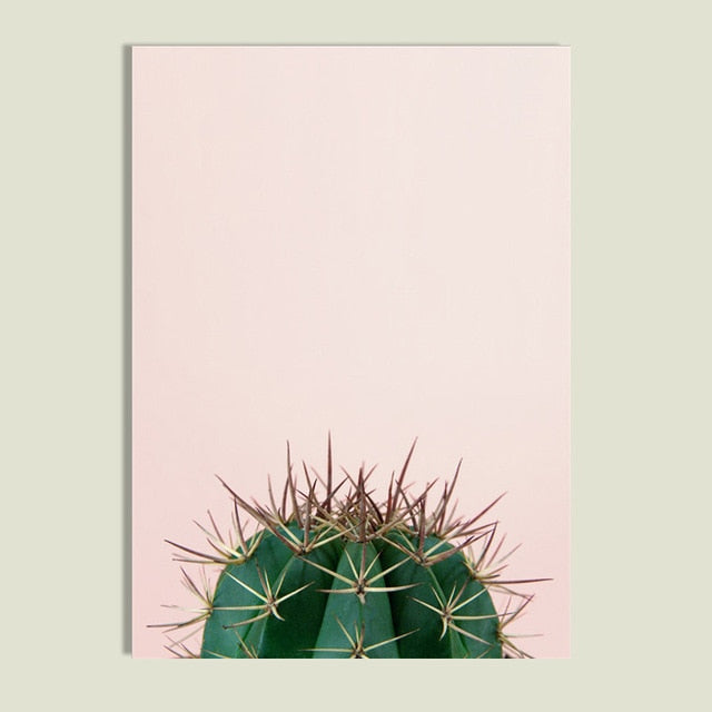 Cactus Plant Canvas Prints-Discover Your Nook