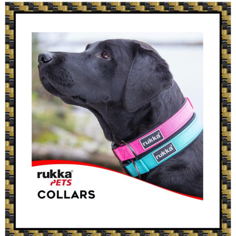 Rukka pets collar collection Averys motorcycles