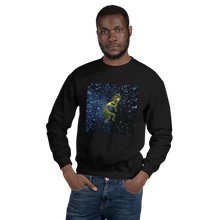 Kokopelli Single Sweatshirt