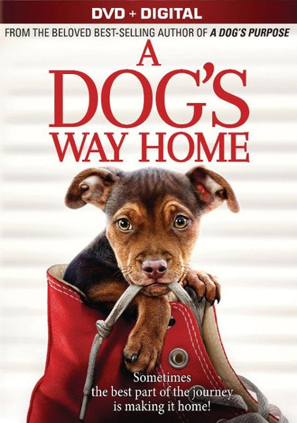 A Dog's Way Home [DVD Disc Only] - OnlyTheDisc