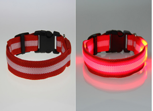 Pet Safety LED Glow Collar