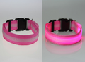 Plucky Panda Pet Safety LED Glow Collar
