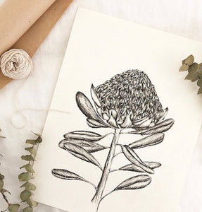 Wattle_Co Card - Waratah