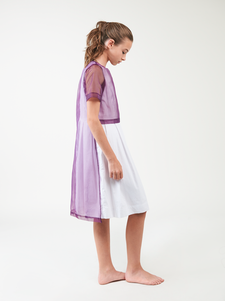 Purple Overlay Dress
