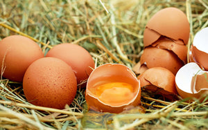 Real Ingredients - It's No Yolk, They Really Are The Best!