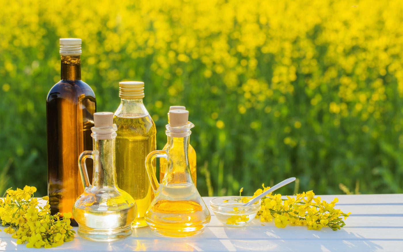 canola oil substitute: different kinds of oil