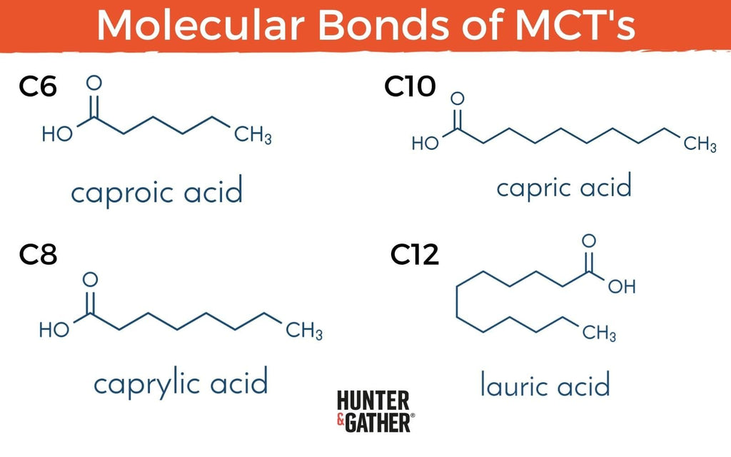 Molecular structure of MCT Oil