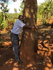 avo farmer hugging tree