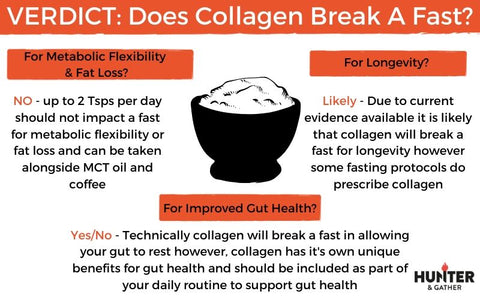collagen infographic