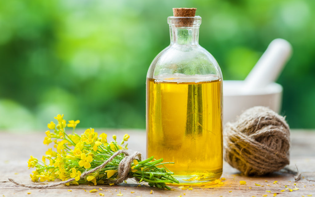 canola oil substitute: canola oil with flowers on the side