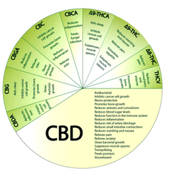 CBD Chart Showing the Effects of all the Different Cannabinoids. This is fake, as no studies prove this.