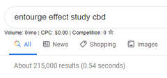 Google Search Showing Entourage Effect of CBD Oil