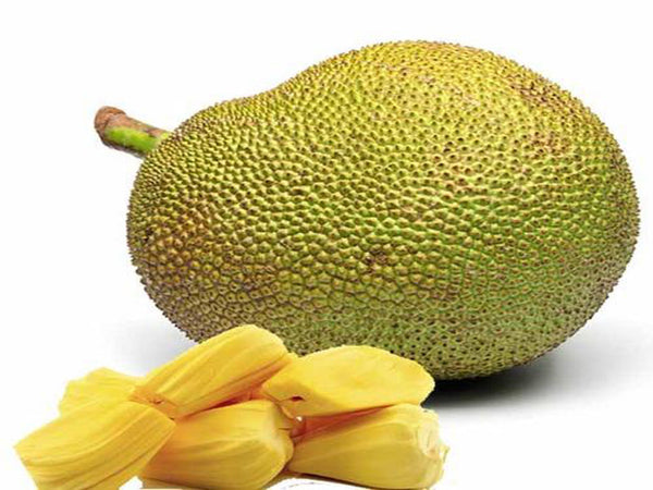 Jackfruit Whole ( 1 Whole Pc - 7kg to 9kg )