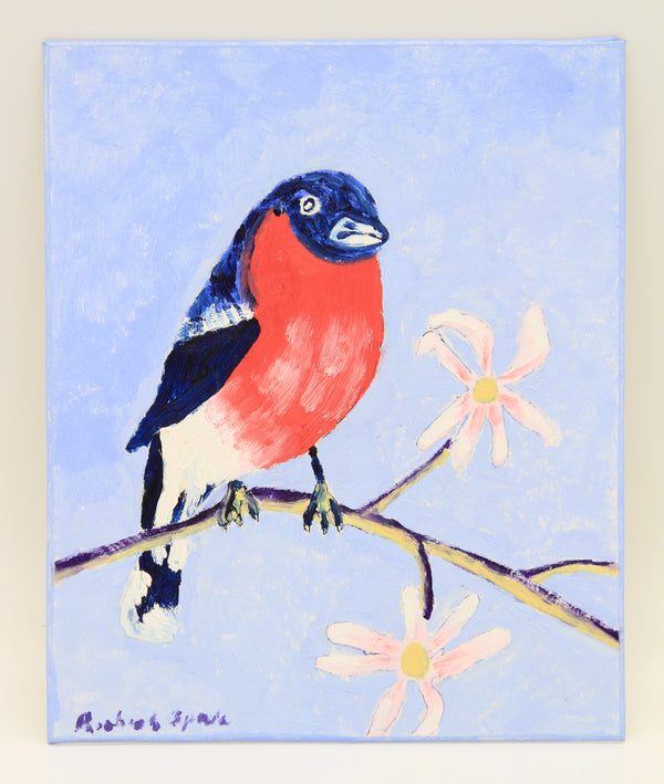 Bullfinch in the Magnolia Tree
