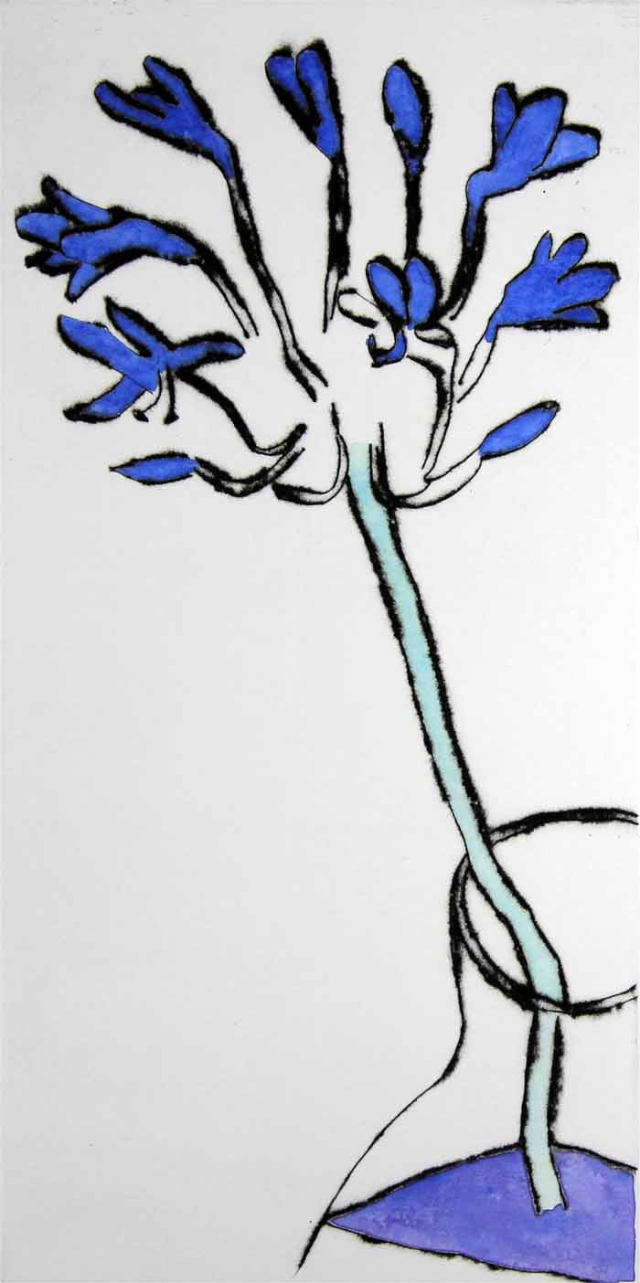 Agapanthus - Limited Edition drypoint and watercolour fine art print by artist Richard Spare
