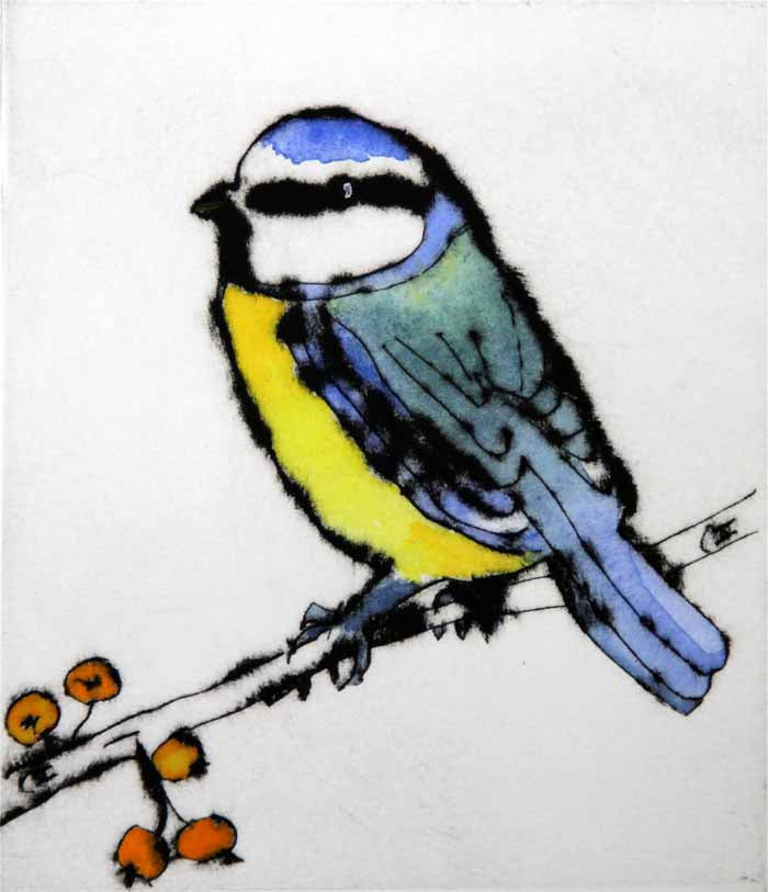 Autumn Blue Tit - Limited Edition drypoint and watercolour fine art print by artist Richard Spare