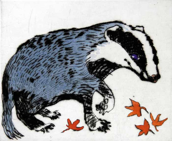 Badger Cub - Limited Edition drypoint and watercolour fine art print by artist Richard Spare