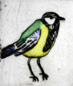 Bashful Great Tit - Limited Edition drypoint and watercolour fine art print by artist Richard Spare