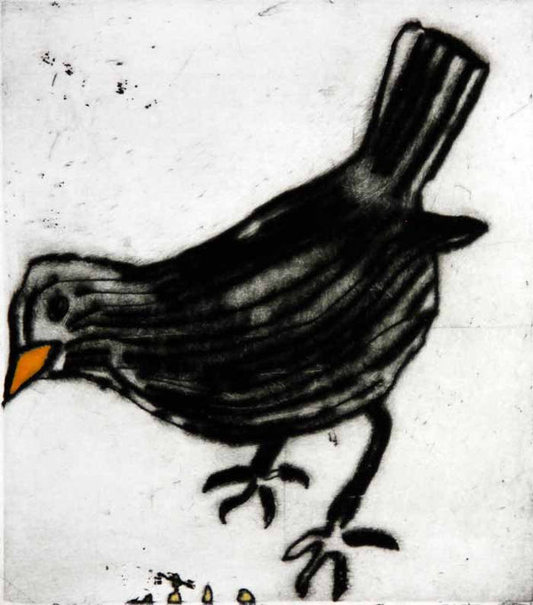 Blackbird - Limited Edition drypoint and watercolour fine art print by artist Richard Spare