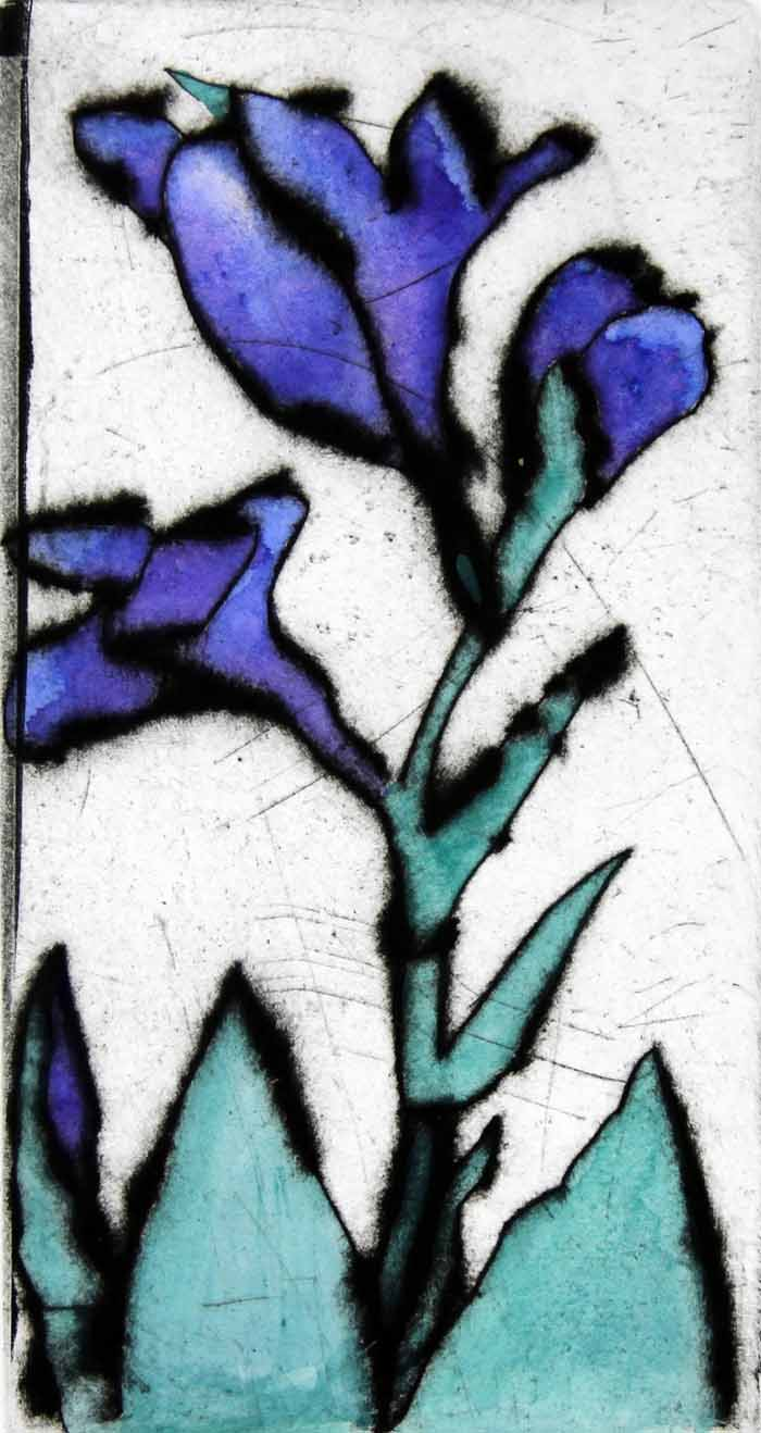 Blue Iris - Limited Edition drypoint and watercolour fine art print by artist Richard Spare