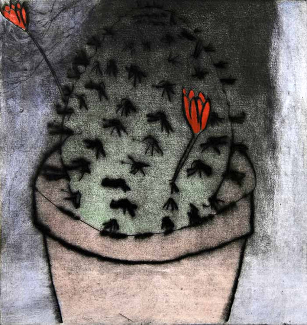 Cactus Flower - Limited Edition drypoint and watercolour fine art print by artist Richard Spare