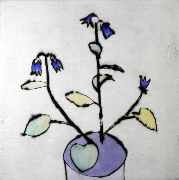 Campanula - Limited Edition drypoint and watercolour fine art print by artist Richard Spare
