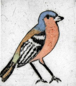 Chaffinch - Limited Edition drypoint and watercolour fine art print by artist Richard Spare