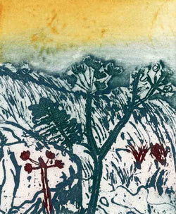 Cornish Landscape - Limited Edition etching fine art print by artist Richard Spare