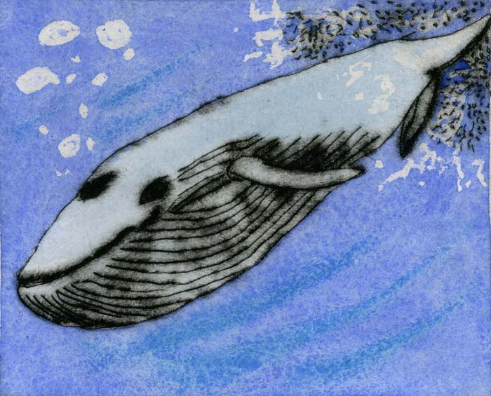 Deep Dive - Limited Edition drypoint and watercolour fine art print by artist Richard Spare