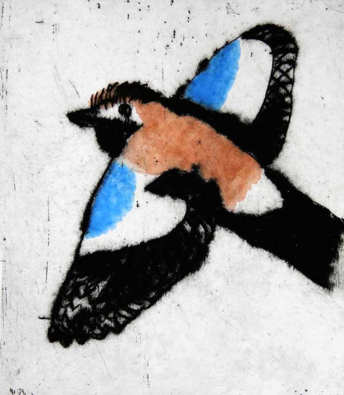 Flying Jay - Limited Edition drypoint and watercolour fine art print by artist Richard Spare