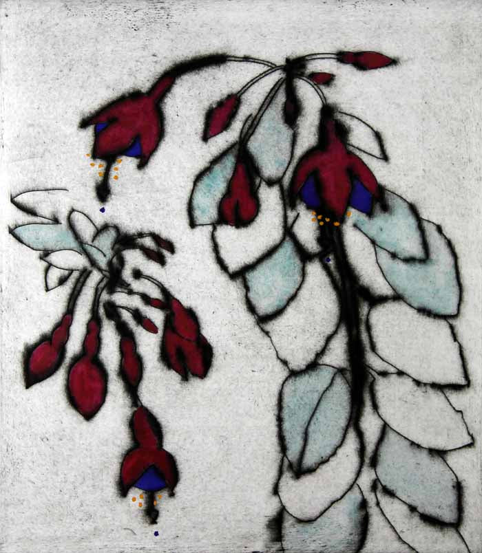 Fuchsia Frond - Limited Edition drypoint and watercolour fine art print by artist Richard Spare