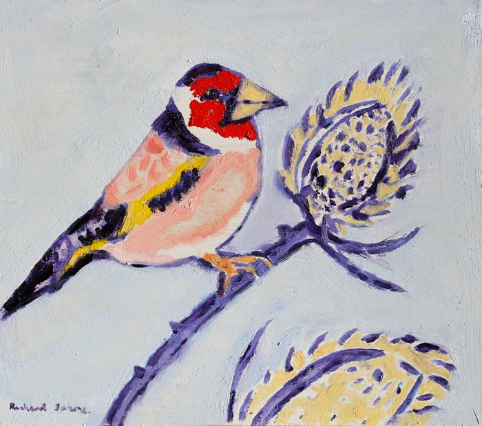 Goldfinch - Original oil on board painting by artist Richard Spare