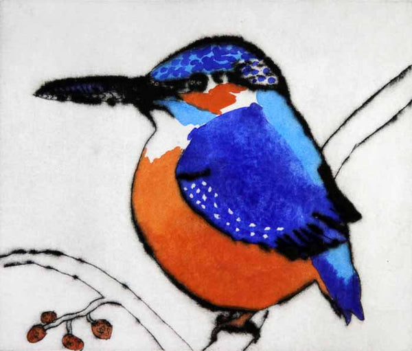 Kingfisher - Limited Edition drypoint and watercolour fine art print by artist Richard Spare