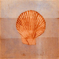 Le Shell - Limited Edition drypoint and aquatint fine art print by artist Richard Spare