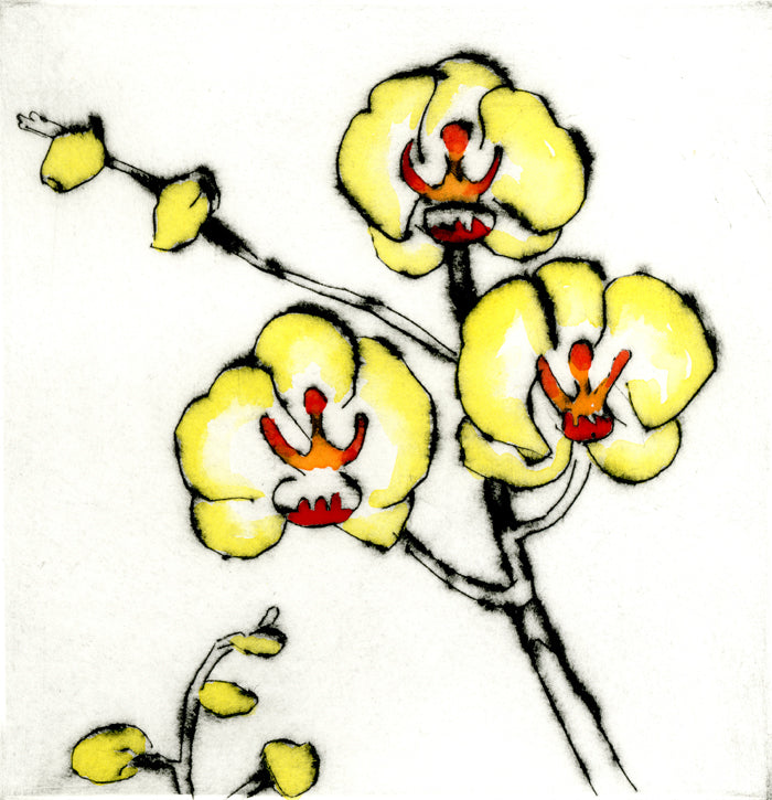 Lemon Orchid - Limited Edition drypoint and watercolour fine art print by artist Richard Spare