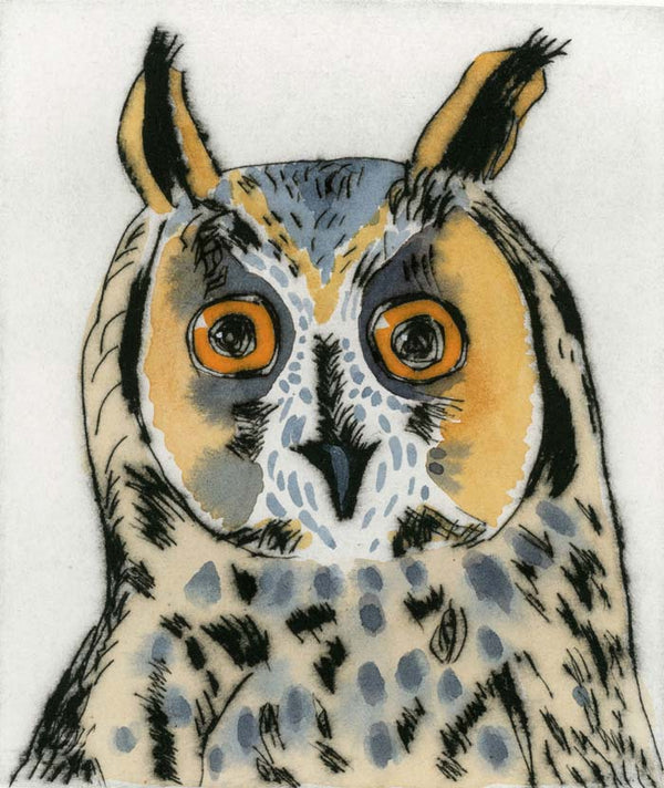 Long-Eared Owl - Limited Edition drypoint and watercolour fine art print by artist Richard Spare