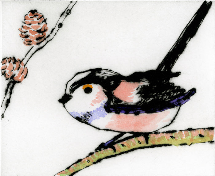 Long Tailed Tit - Limited Edition drypoint and watercolour fine art print by artist Richard Spare