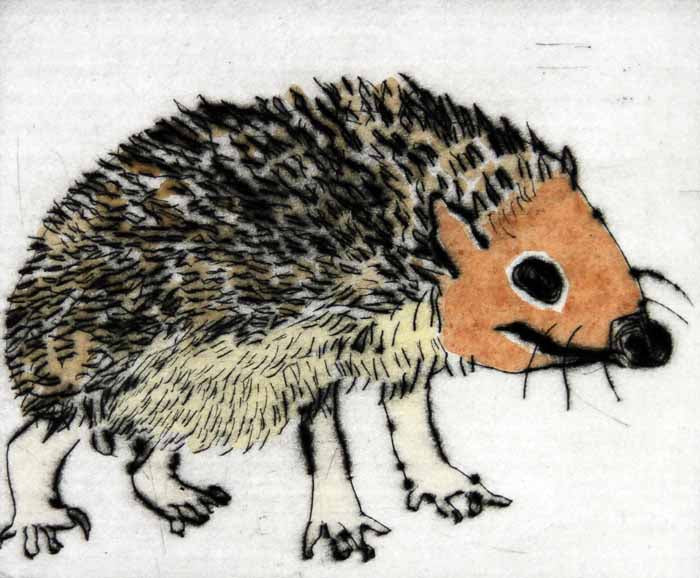 Mr Prickles - Limited Edition drypoint and watercolour fine art print by artist Richard Spare