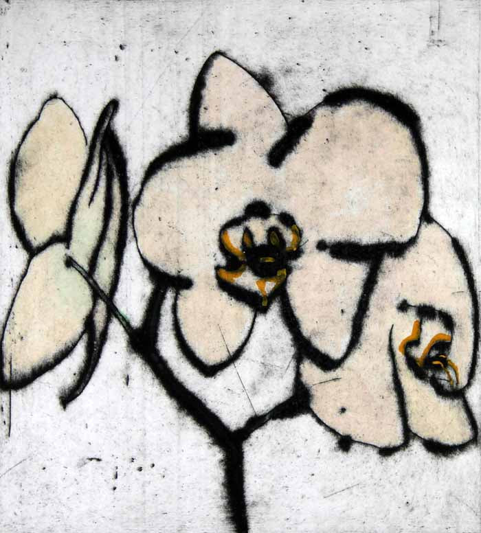 Orchid - Limited Edition drypoint and watercolour fine art print by artist Richard Spare