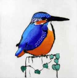 Perching Kingfisher - Limited Edition drypoint and watercolour fine art print by artist Richard Spare