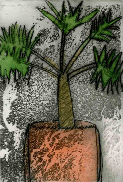 Pot + Palm - Limited Edition drypoint and watercolour fine art print by artist Richard Spare