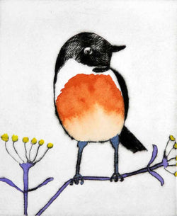 Stonechat - Limited Edition drypoint and watercolour fine art print by artist Richard Spare