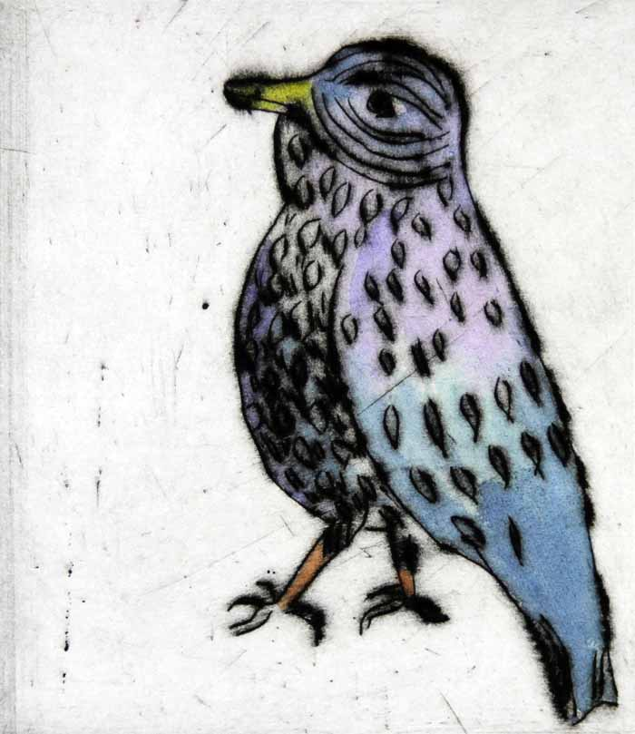 Swaggering Starling - Limited Edition drypoint and watercolour fine art print by artist Richard Spare