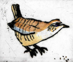 Wren - Limited Edition drypoint and watercolour fine art print by artist Richard Spare